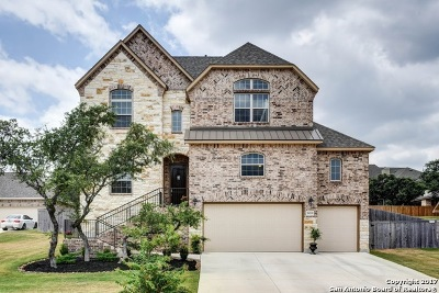 San Antonio Single Family Home For Sale: 26219 Dakota Chief