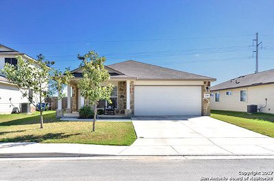 New Braunfels Single Family Home For Sale: 2289 Fernhill Dr