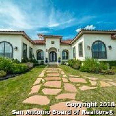 San Antonio Single Family Home For Sale: 9711 Ivory Cyn