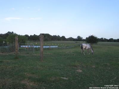 Farm & Ranch For Sale: 255 S Palo Alto Dr