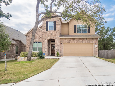Single Family Home For Sale: 8222 Two Falls