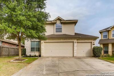 Single Family Home For Sale: 24207 Palo Duro Peak