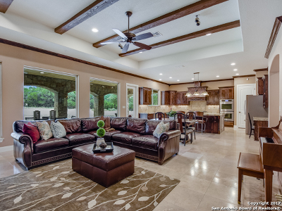 Boerne Single Family Home For Sale: 26970 Ranchland Vw