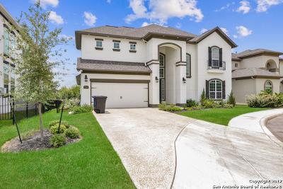 San Antonio Single Family Home For Sale: 2514 Dunmore Hl