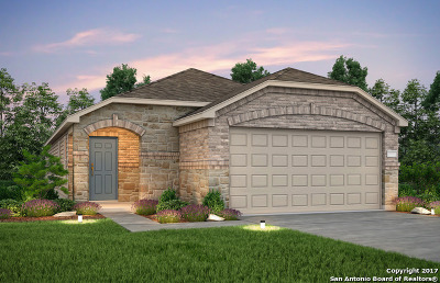Helotes Single Family Home New: 11742 Silver Sky