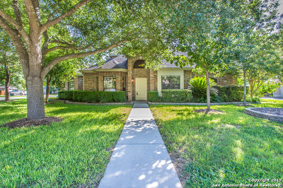 New Braunfels Single Family Home New: 197 Asbury Ct