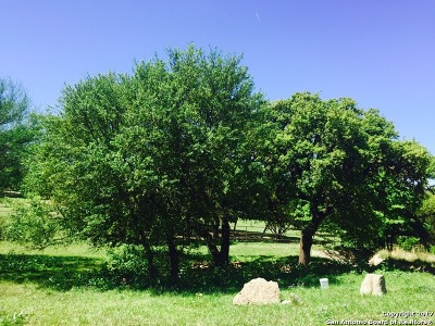Boerne Residential Lots & Land For Sale: 29023 Tivoli Way