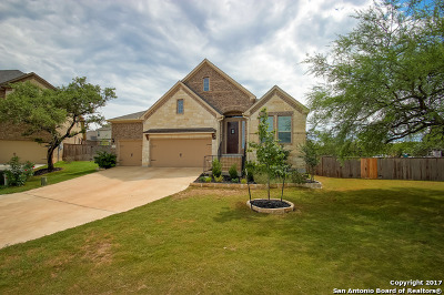 Fair Oaks Ranch Single Family Home New: 9014 Leslies Gate