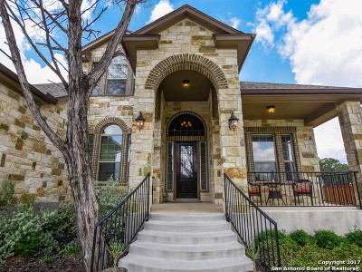 New Braunfels Single Family Home New: 261 Allemania Dr