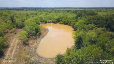 Guadalupe County Farm & Ranch For Sale: 000 Windy Hill