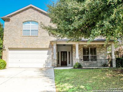 Cibolo Single Family Home For Sale: 104 Blue Vista