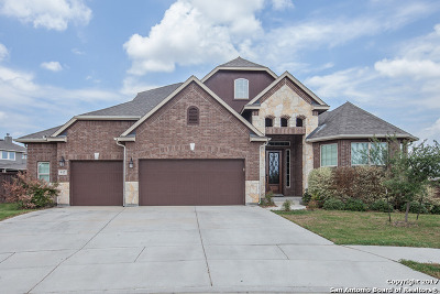 Cibolo, Schertz, Selma, Universal City Single Family Home For Sale: 917 Turning Stone