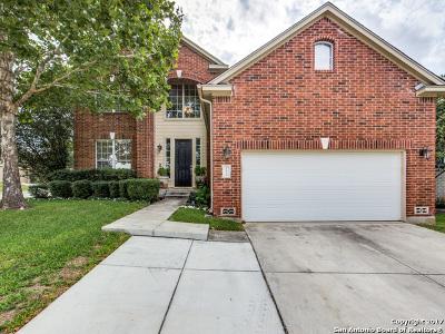 San Antonio Single Family Home New: 21834 Hyerwood