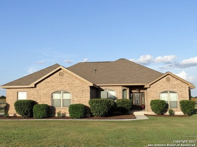 Guadalupe County Single Family Home New: 9557 Huber Rd