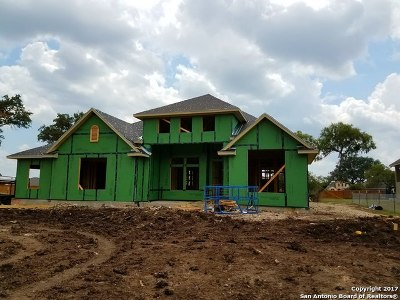Bexar County Single Family Home New: 13632 Silver Sage Dr