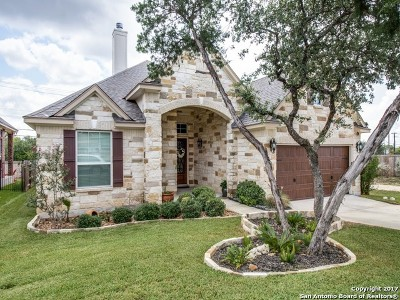 Helotes Single Family Home New: 13302 Windmill Trace