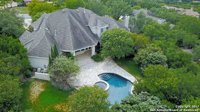 San Antonio Single Family Home For Sale: 24906 Parview Cir