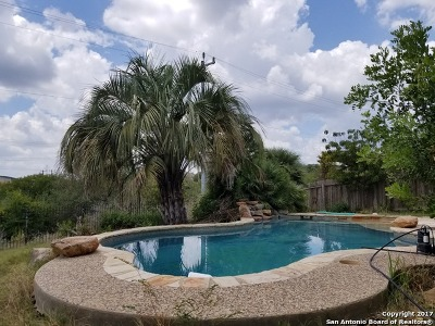 San Antonio Single Family Home For Sale: 21815 Pelican Crk