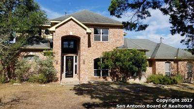 Boerne Single Family Home New: 27130 Autumn Glen
