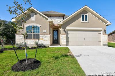New Braunfels Single Family Home New: 1059 Cedar Glen