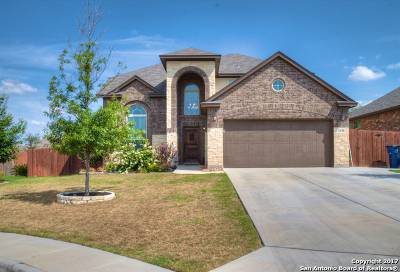 New Braunfels Single Family Home New: 1648 Sun Ledge Way