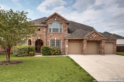 San Antonio Single Family Home For Sale: 906 Steubing Oaks