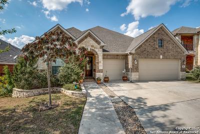San Antonio Single Family Home For Sale: 3827 Forsythia
