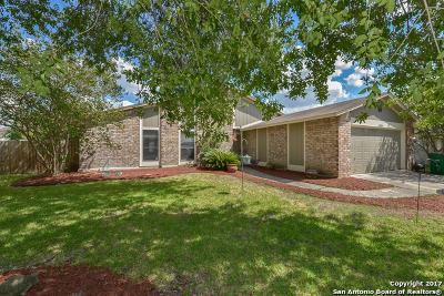 San Antonio Single Family Home New: 13718 Sunny Gln