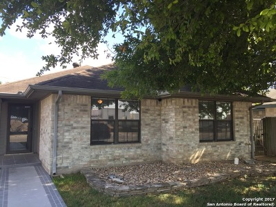 New Braunfels Single Family Home New: 1244 Summerwood Dr