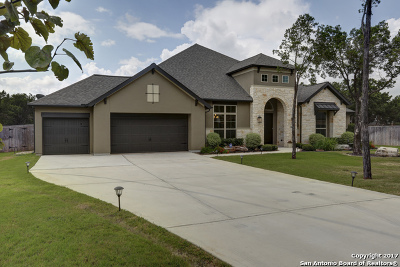 New Braunfels Single Family Home For Sale: 981 Wilderness Oaks