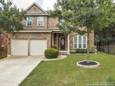 San Antonio Single Family Home New: 518 Mesa Valley