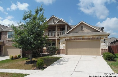 Cibolo Single Family Home New: 329 Buckboard Ln