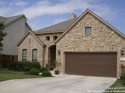 San Antonio Single Family Home New: 21611 Seminole Oaks