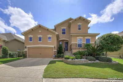 San Antonio Single Family Home New: 323 Tranquil Oak