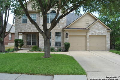 San Antonio Single Family Home New: 20410 Settlers Vly