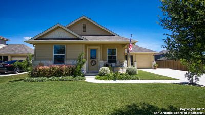 New Braunfels Single Family Home New: 397 Gentle Breeze