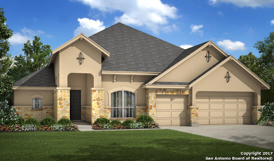 New Braunfels Single Family Home For Sale: 2135 Oakwood Hollow