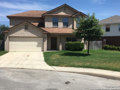 Helotes Single Family Home New: 10414 Alsfeld Rnch