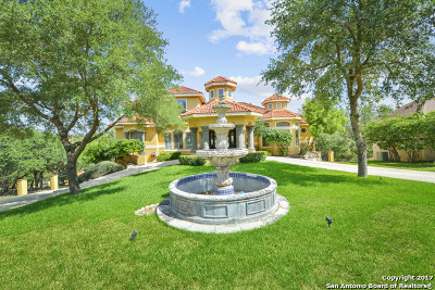 San Antonio Single Family Home New: 25007 Player Oaks