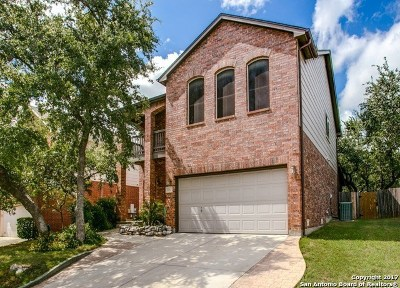 San Antonio Single Family Home New: 3331 Roan Vly