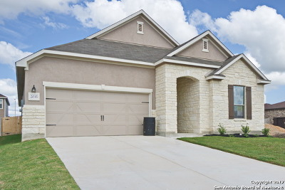 New Braunfels Single Family Home New: 2035 Stepping Stone