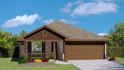 New Braunfels Single Family Home New: 2278 Kolibri Way