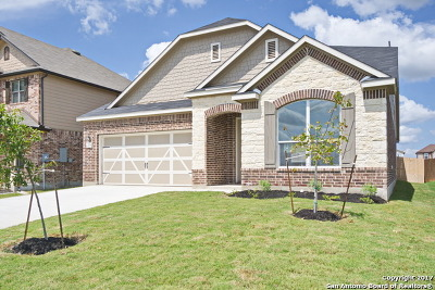 New Braunfels Single Family Home New: 2059 Stepping Stone