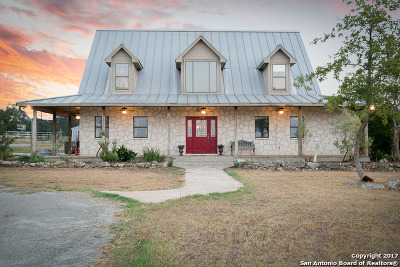 New Braunfels Single Family Home For Sale: 1720 Wegner Rd