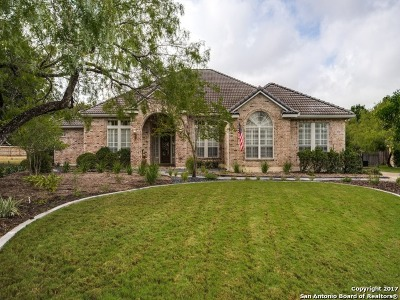 San Antonio Single Family Home New: 14002 Bluff Manor Dr