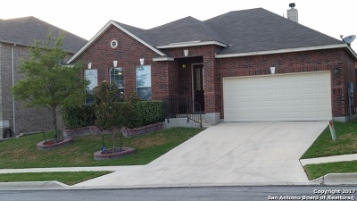 Cibolo Single Family Home New: 217 Springtree Ln