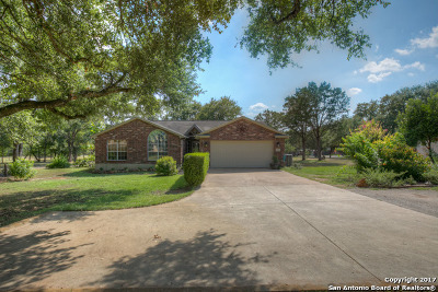 Comal County Single Family Home New: 14147 Fm 306