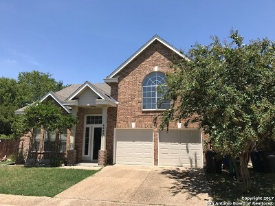 San Antonio Single Family Home New: 2903 Stoney Vis