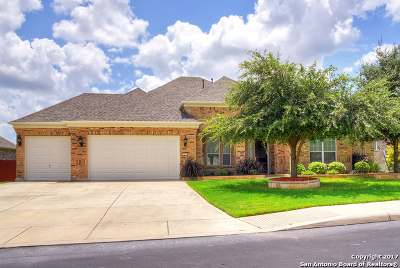 San Antonio Single Family Home New: 12526 Tersk