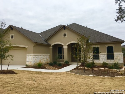 San Antonio Single Family Home New: 29019 Gracies Sky